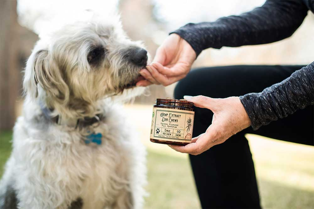 Dogs Hip & Joint Care Reviews