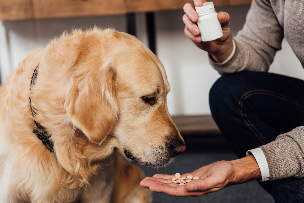 side effects of dog joint supplements